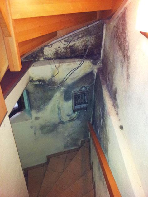 Feuchter Keller Nasse Wande Schimmel So Retten Sie Ihr Haus